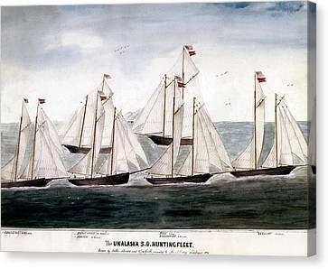 Alaska Hunting Fleet, 1896 Canvas Print by Granger