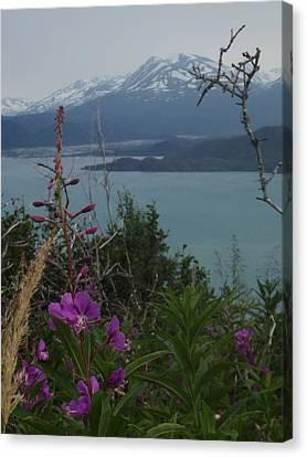 Alaska Loves You Canvas Print by Nikki Jauron