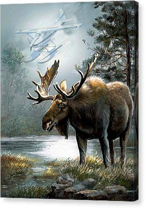 Alaska Moose With Floatplane Canvas Print by Regina Femrite