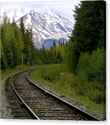 Alaskan Tracks Canvas Print by Art Block Collections