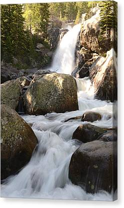 Alberta Falls Canvas Print by Tranquil Light  Photography