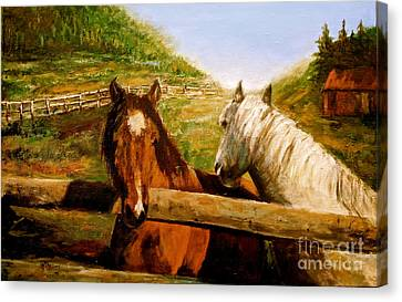 Alberta Horse Farm Canvas Print