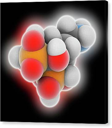 Alendronic Acid Drug Molecule Canvas Print by Laguna Design