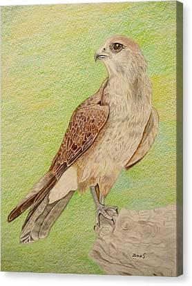 Alert For Prey Canvas Print by Zina Stromberg