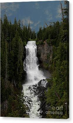 Canvas Print featuring the photograph Alexander Falls by Rod Wiens