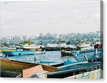Alexandrian Harbour Canvas Print by Cassandra Buckley