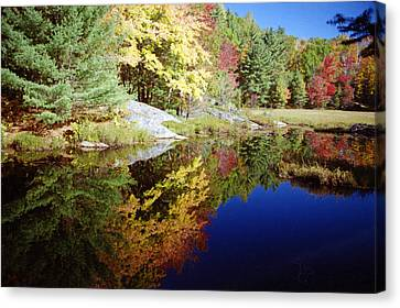 Canvas Print featuring the photograph Algonquin Reflection by David Porteus