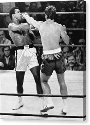 Ali-quarry Fight Canvas Print by Underwood Archives