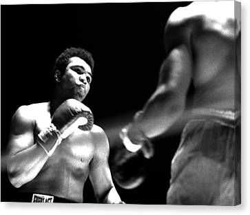 Ali - The Look Canvas Print