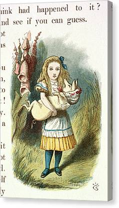 Alice And The Pig-baby Canvas Print