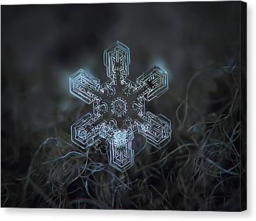 Snowflake Photo - Alioth Canvas Print