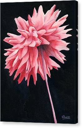 Alizarin Dahlia Canvas Print by Ken Powers