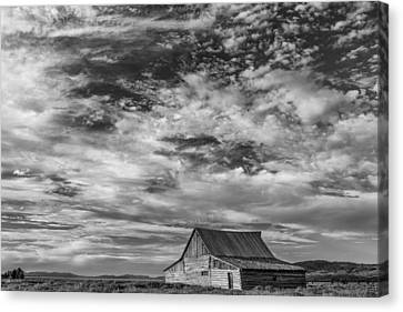 All Alone Canvas Print by Jon Glaser