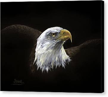 All American Canvas Print by Jamil Alkhoury