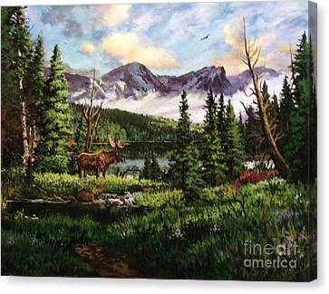 All Clear Canvas Print by W  Scott Fenton