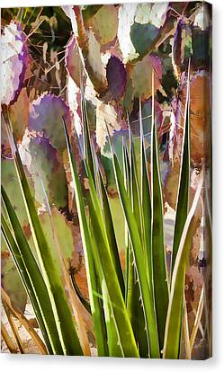 All Pointy And Sharp Canvas Print