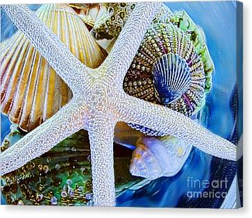 All The Colors Of The Sea Canvas Print by Colleen Kammerer