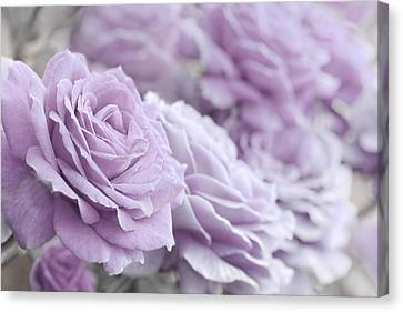 Canvas Print featuring the photograph All The Soft Violet Roses by Jennie Marie Schell