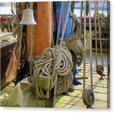 All Tied Up Canvas Print by Ron Harpham