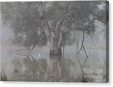 All Will Become Clear Canvas Print by Linda Lees