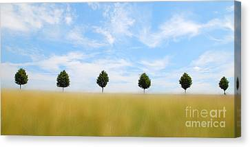 Hannes Cmarits Canvas Print - Allee  03 by Hannes Cmarits