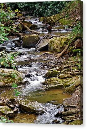 Allegheny Bound Canvas Print