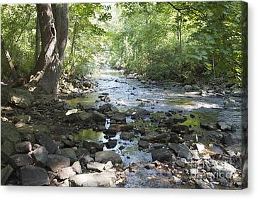 Canvas Print featuring the photograph Allen Creek by William Norton