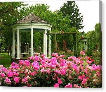 Allentown Pa Gross Memorial Rose Gardens Canvas Print by Jacqueline M Lewis