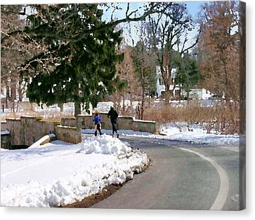 Allentown Pa Trexler Park Winter Exercise Canvas Print by Jacqueline M Lewis