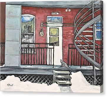 Alley Cat In Verdun Canvas Print