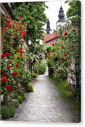 Alley Of Roses Canvas Print