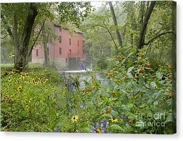 Alley Spring Canvas Print