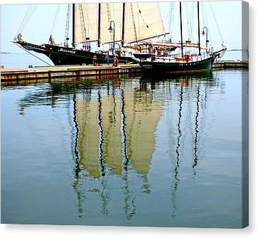 Alliance And Serenity Canvas Print