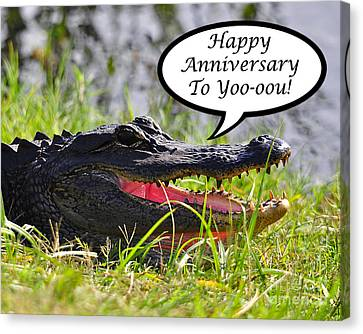 Alligator Anniversary Card Canvas Print by Al Powell Photography USA