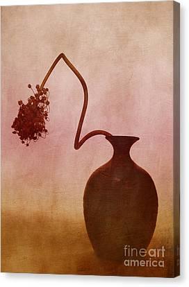 Allium Canvas Print by Elena Nosyreva