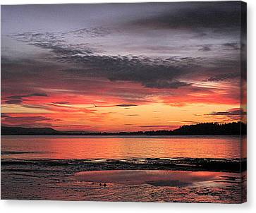 Alluring Sunset Canvas Print by Suzy Piatt