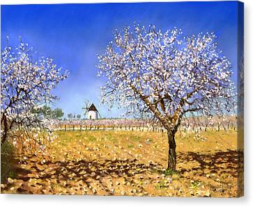 Almendros Canvas Print by Margaret Merry