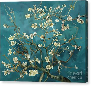 Canvas Print featuring the painting Almond Blossoms' Reproduction by Tim Gilliland