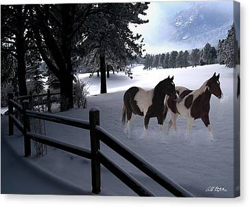 Almost Christmas Canvas Print by Bill Stephens