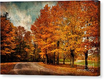 Almost Home Canvas Print by Lois Bryan