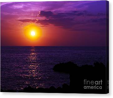 Aloha I Canvas Print by Patricia Griffin Brett
