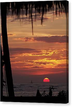 Aloha Canvas Print by Karen Wiles