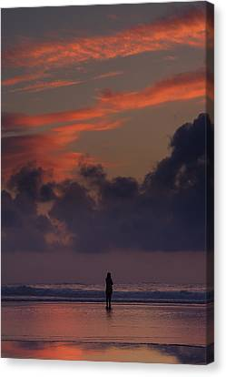 Alone At Sunset II Canvas Print by Marco Oliveira