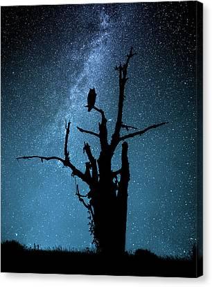 Universe Canvas Print - Alone In The Dark by Manu Allicot