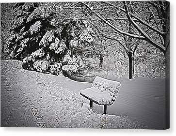 Canvas Print featuring the photograph Alone In The Park.... by Deborah Klubertanz