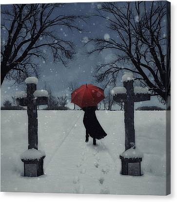 Alone In The Snow Canvas Print by Joana Kruse