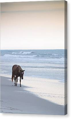 Alone Canvas Print by Michael Donahue