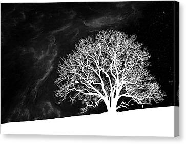 Alone On A Hill Canvas Print by Tom Mc Nemar