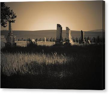 Alone On The Prairie Canvas Print by One Rude Dawg Orcutt