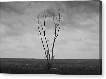 Canvas Print featuring the photograph Alone  by Ricky L Jones